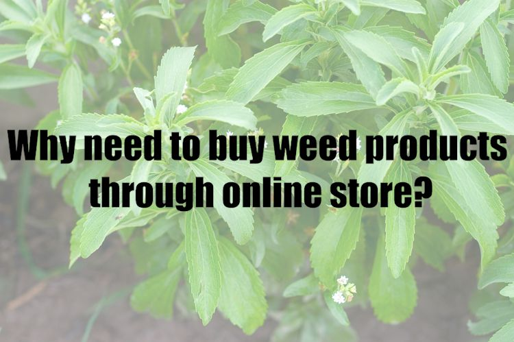 Why need to buy weed products through online store?